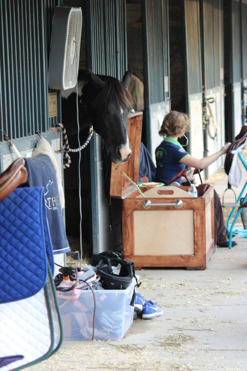 Horse shows, i.e. LOTS of tack cleaning!!!