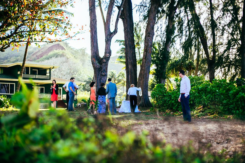 hanalei wedding photograhy_-9.jpg