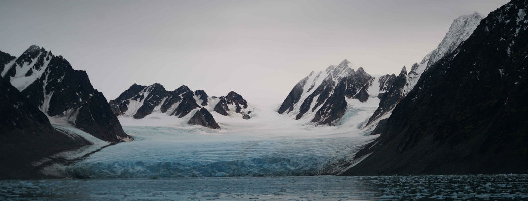 bannerInto-the-Arctic-1.jpg