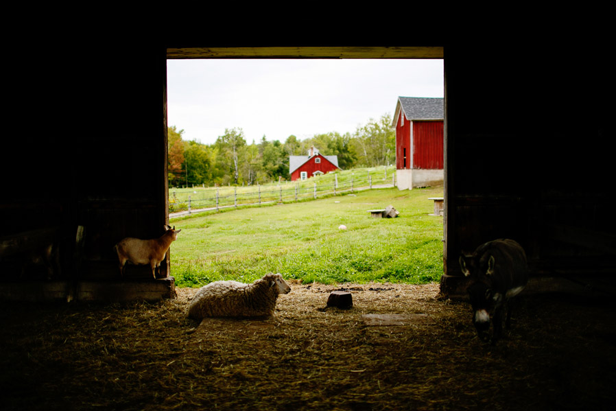 inn-at-mountain-view-farm-vermont-001