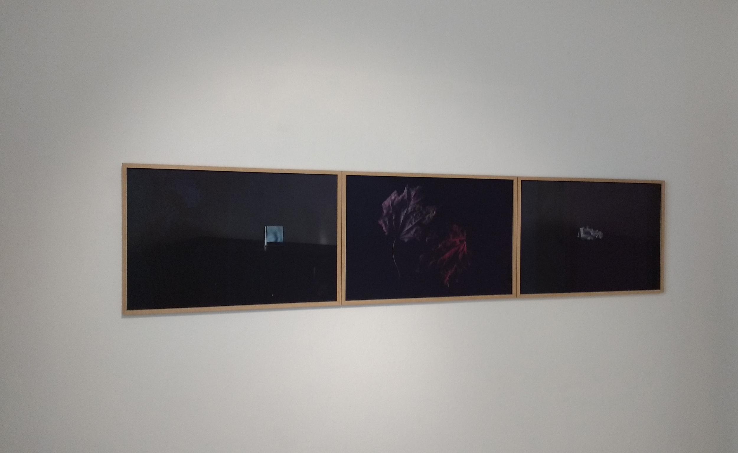 Thoughts, I, II, III, photographic works