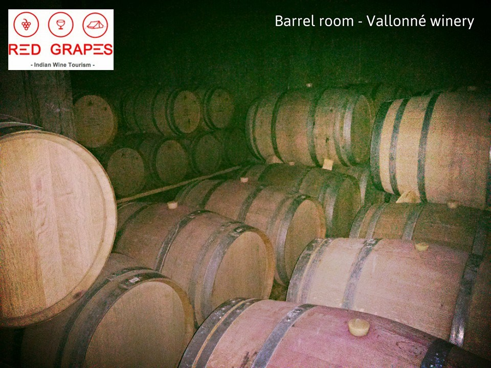 Vallonne winery, barrel room, Nashik wine tour