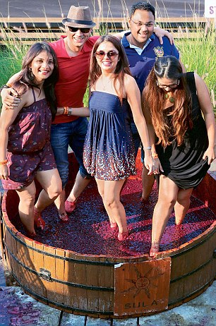 Grape stomping in India, nashik at Sula winery