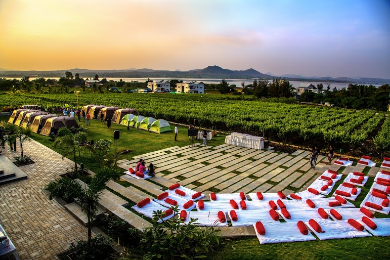 Nashik wine tour | Soma winery wedding