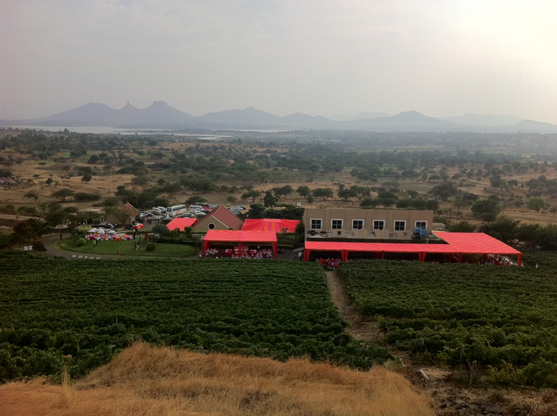 Nashik wine tour | Grover zampa winery