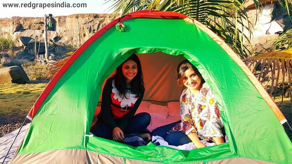 Tent at Camp site for Christmas event 2016 at Wine Information Center by Red Grapes at Wine park, Nashik, Maharashtra, India.