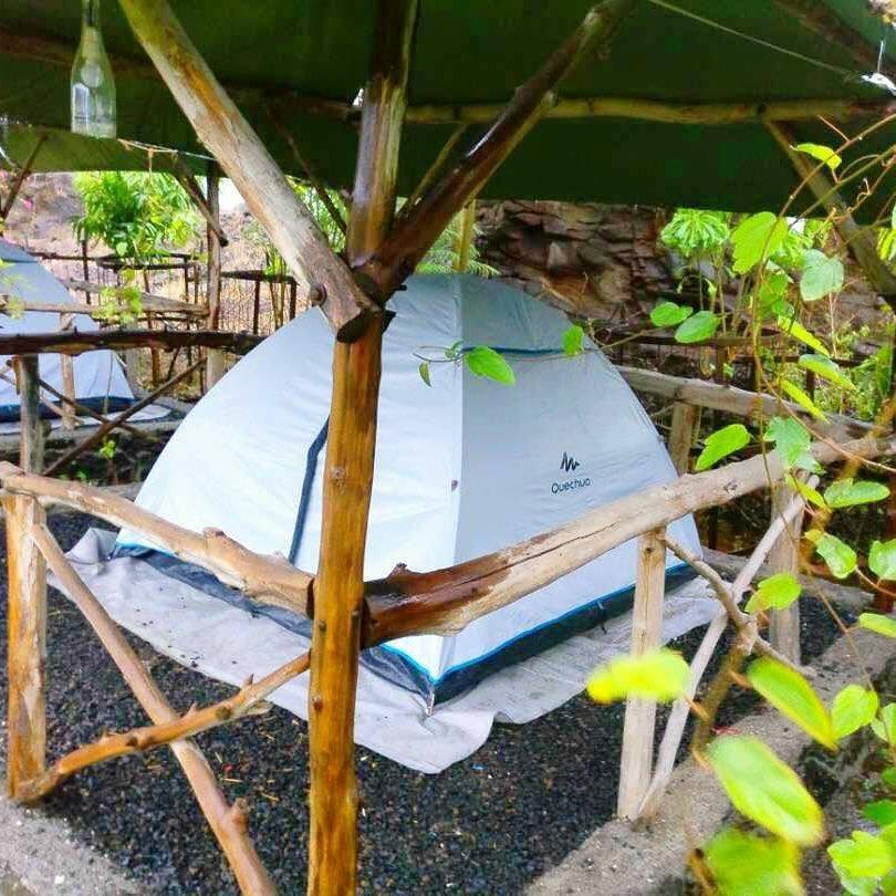 Quechua camp tents at wine information center at wine park, Nashik.