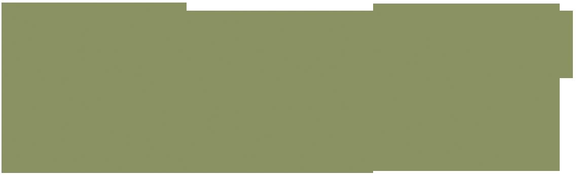 victorias-secret-logo-stacked.png