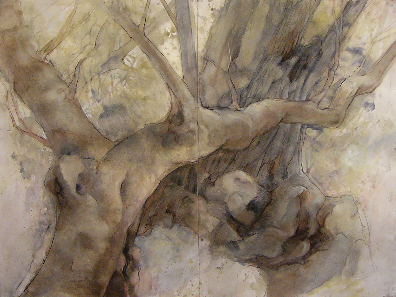 Olive Tree  (100 x 150cm)