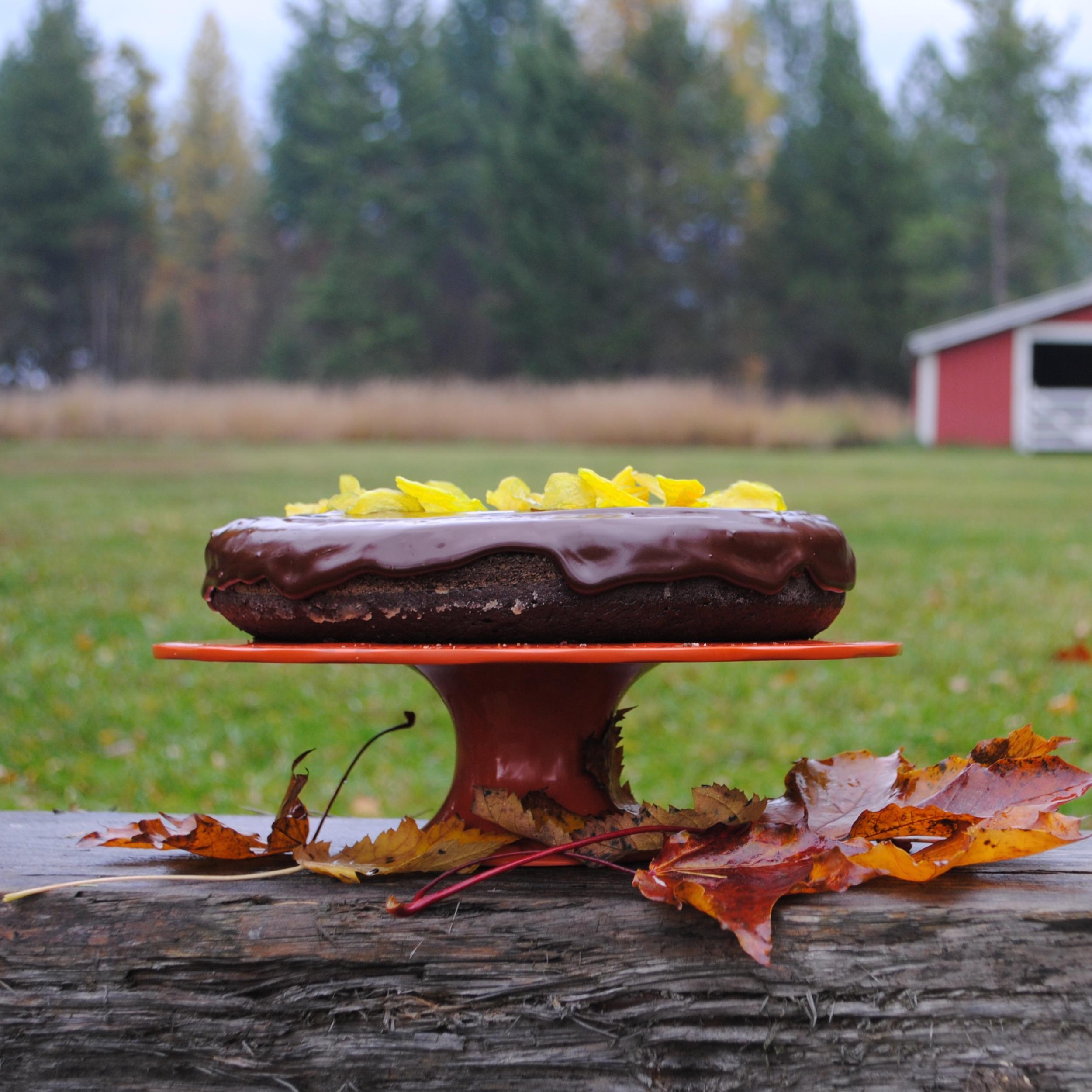 chocolatebeetcake