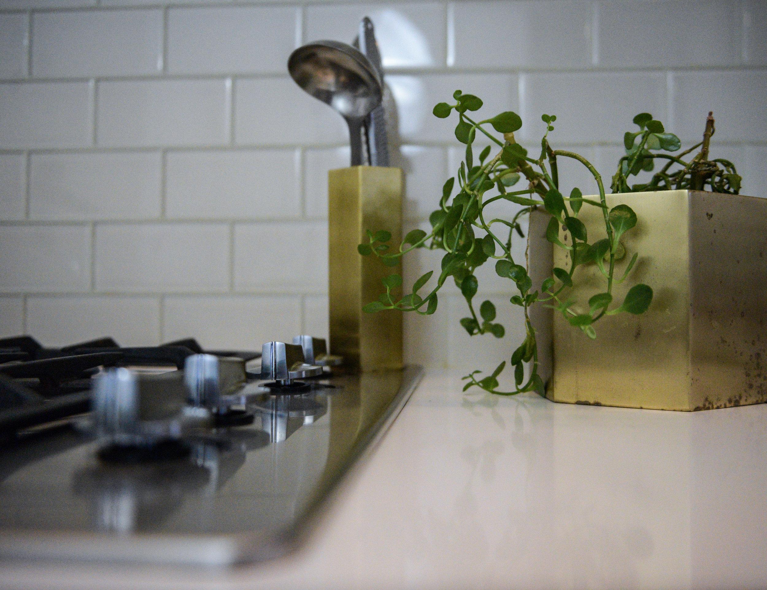 00 nassau street kitchen 012.jpg