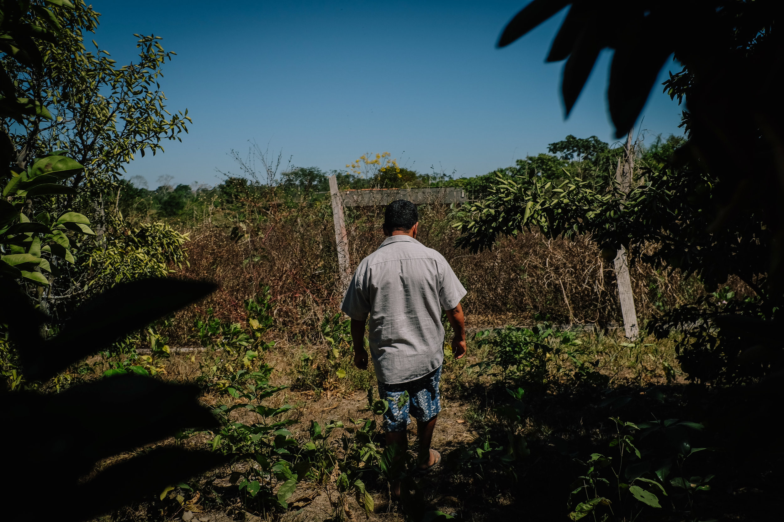 """Messias, a family farmer that lives in the municipality of Apiacás, in northern Mato Grosso, walks through his farm. """"Our greatest difficulty is water"""", he says, """"it gets drier every year""""."""