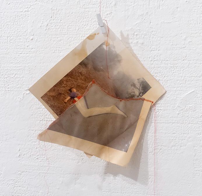 Liz Steketee, from  sewn 2, my diary