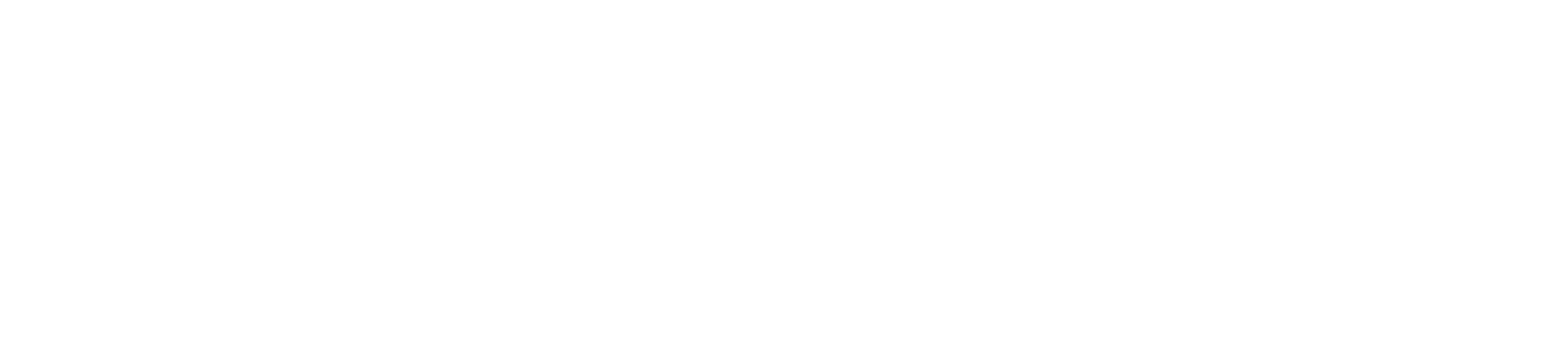 Retail_Branding_Hold The Balloon_Bootstrap Design Co-01-01.png