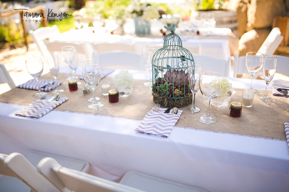 Bird_cage_succulent_centerpiece_wedding