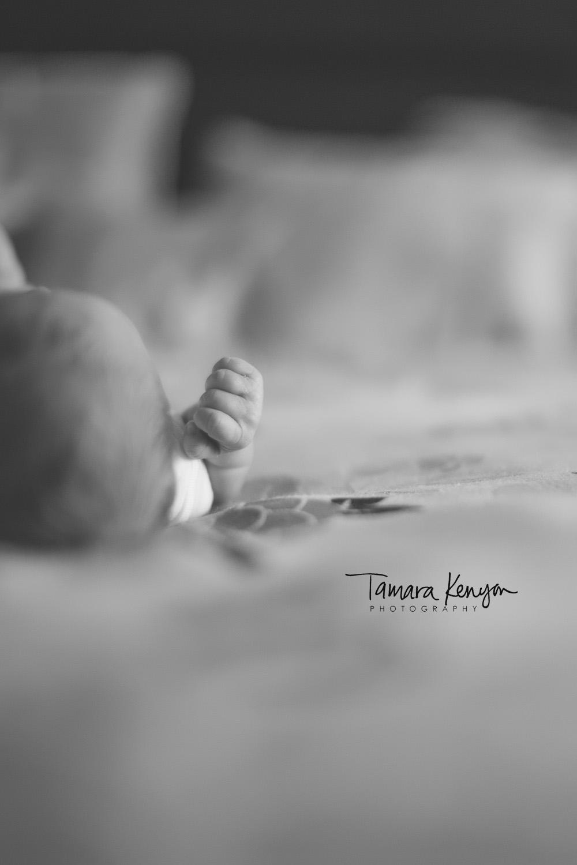 Boise_idaho_newborn_photographer