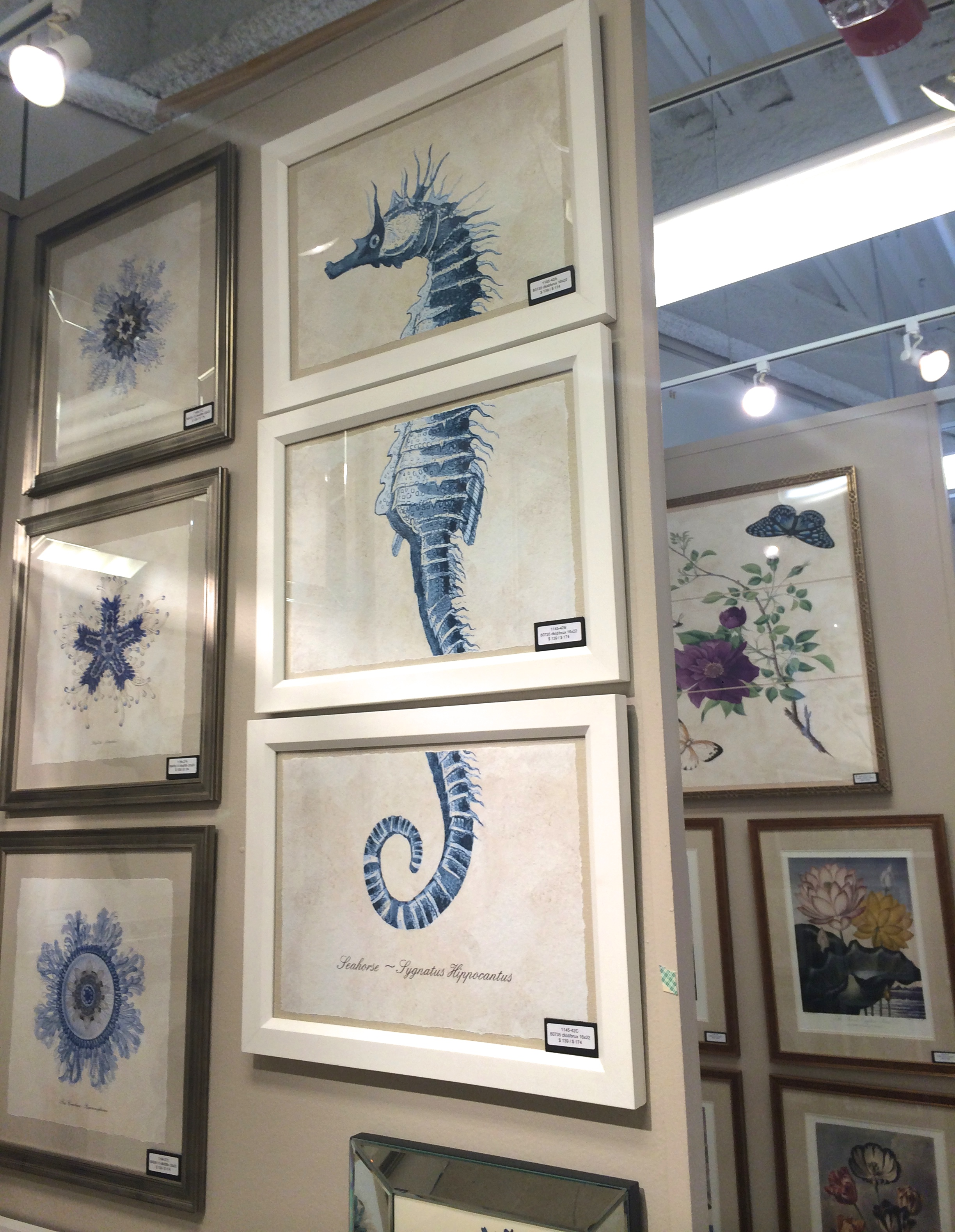 Love the seahorse - lots of other fun sea creature prints available here, too!