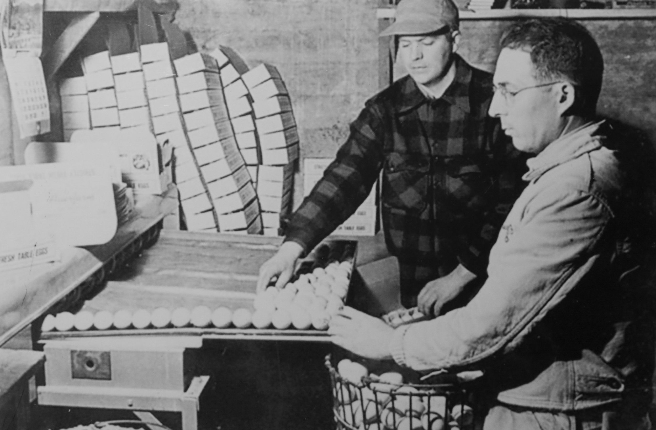 George Sr. is seen rolling eggs as part of his new poultry business in Mansfield, Connecticut. (Archive)