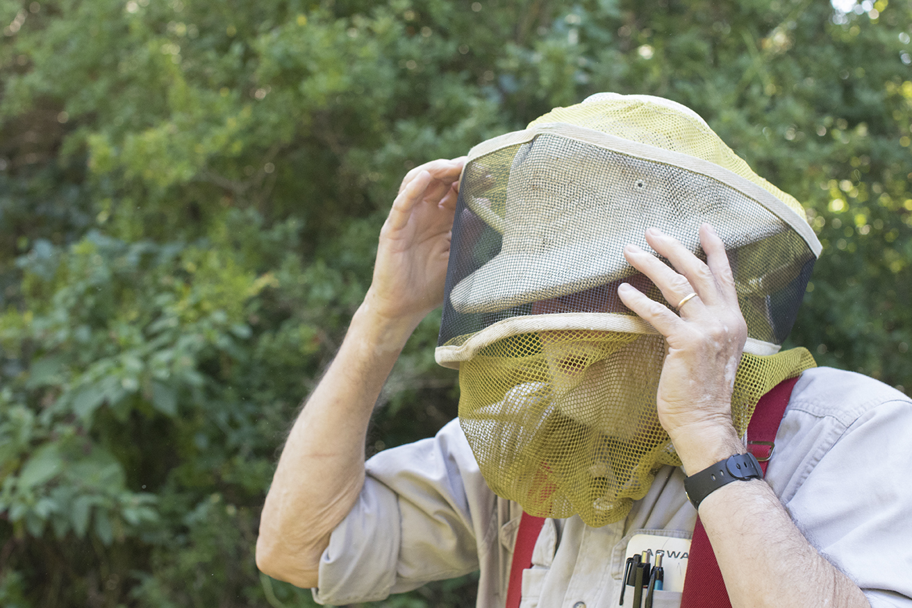 George puts on his bee veil at his bee yard in Chaplin, Connecticut. (Jackson Mitchell)