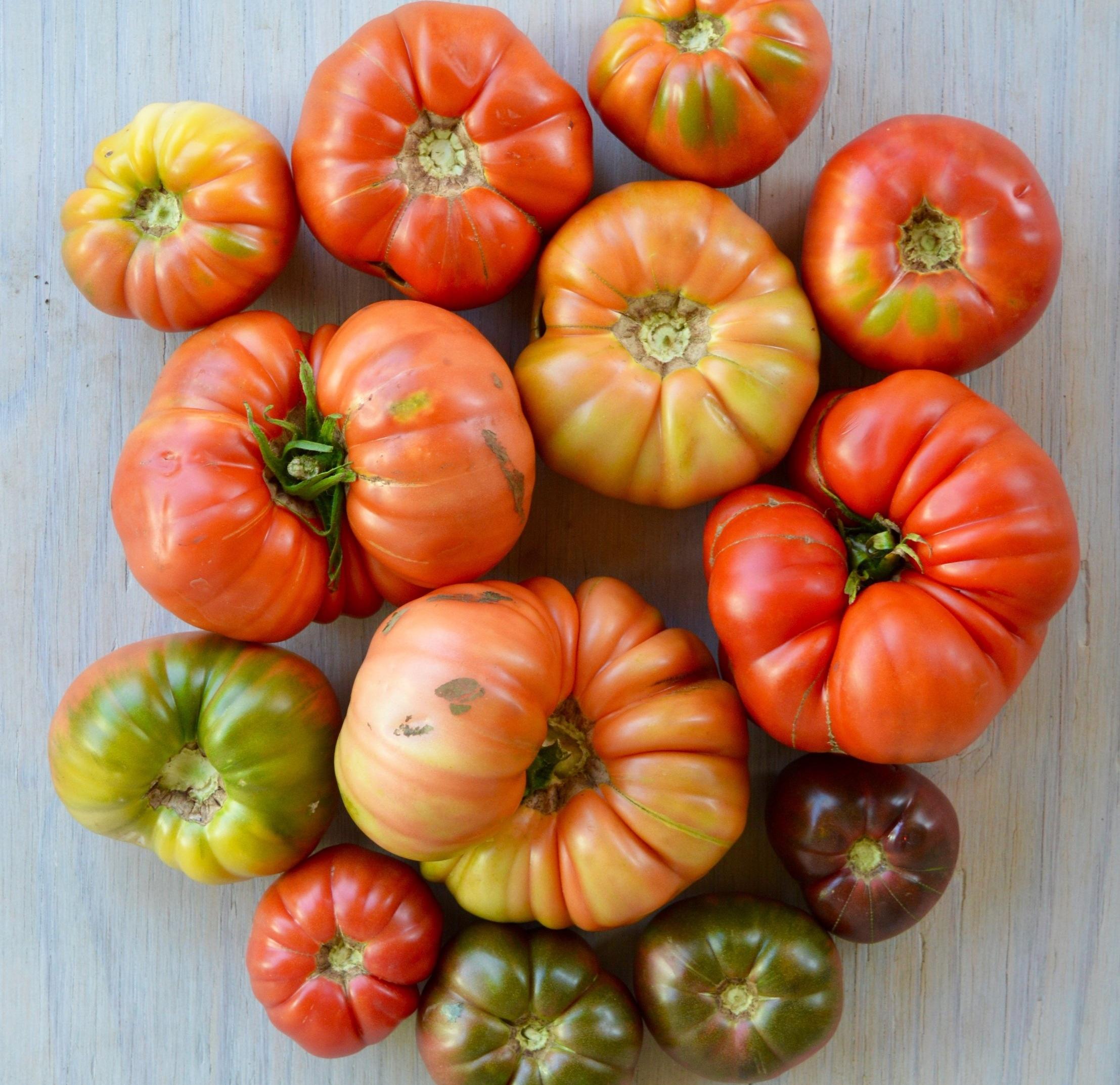 Tomatoes : Heirloom (Cherokee, Brandywine, Red Pear, Striped German, and Costoluto), Beefsteaks, and Plum/Paste
