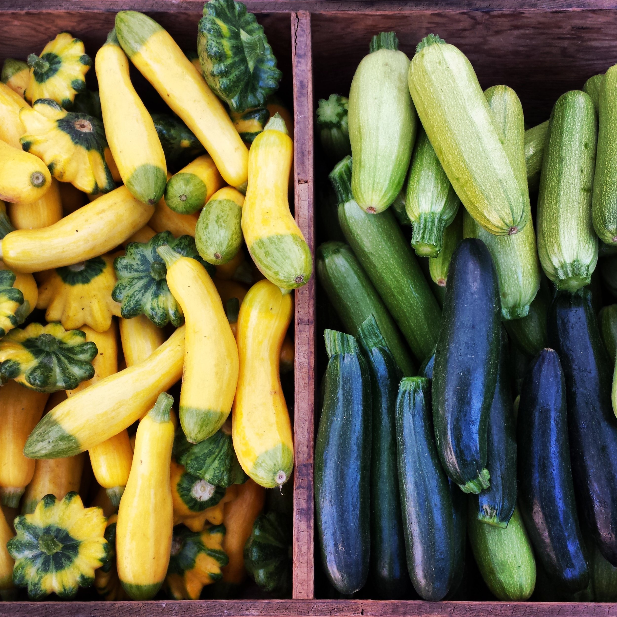 Zucchini & Summer Squash : Green, Gold, and Cousa Zucchini. Patty Pan and Zephyr Summer Squash.