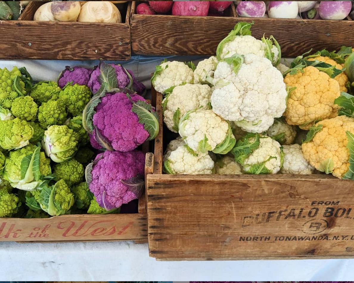 Cauliflower:  white, orange, purple, and romanesco