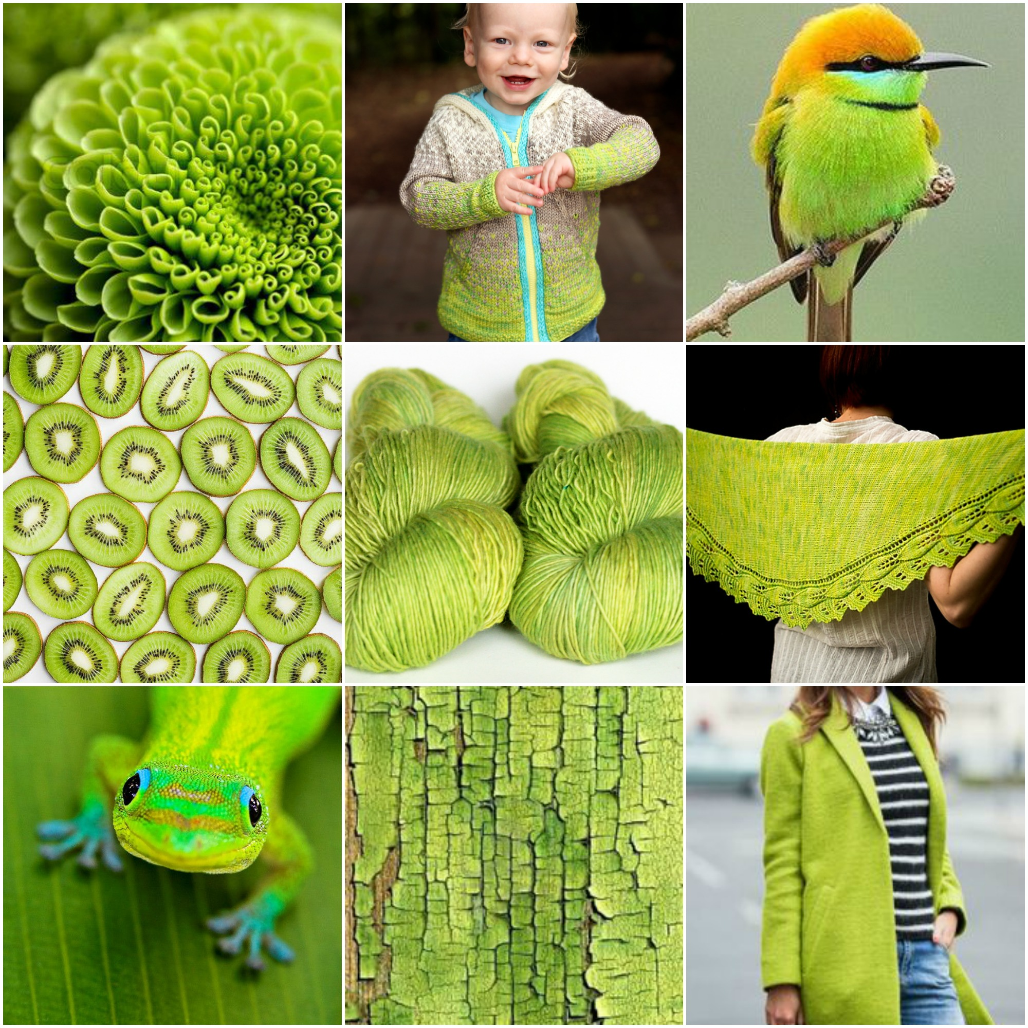 flower , Rowan's R&R Hoodie , bird , kiwis , TFA Red Label Cashmere/Silk SIngles in Lemongrass , On The Move shawl . salamander , crackled paint , jacket .