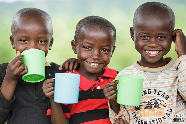 Children from a community in Rwanda are invited to the home of a Heifer International partner to drink goat milk from her farm. Photo courtesy Heifer International.