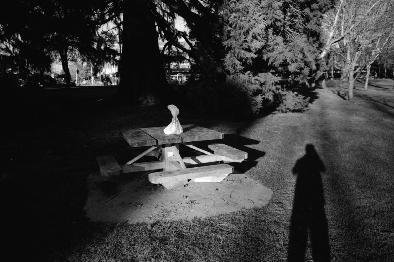 shadowtrash.jpg