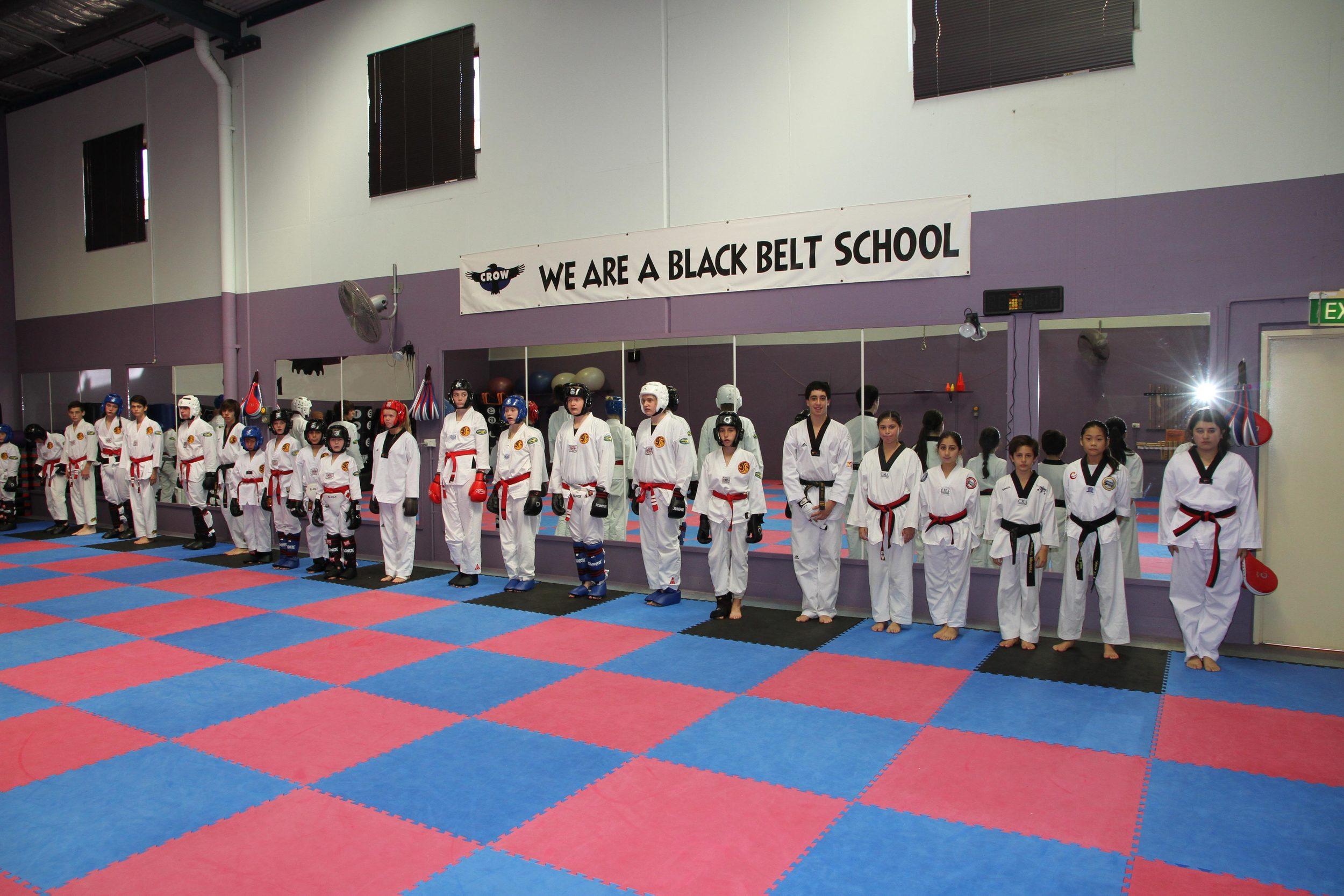 Taekwondo and sparring classes