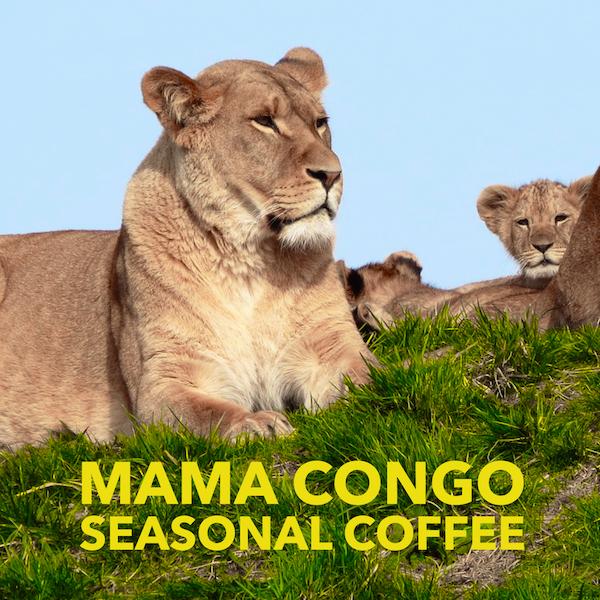 mama-congo-medium-roast-seasonal-SparkplugCoffee-DRC-Africa.PNG