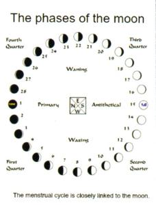 moonphasesbright.jpg