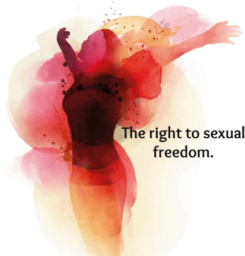 Sexual freedom encompasses the possibility for individuals to express their full sexual potential. However, this excludes all forms of sexual coercion, exploitation and abuse at any time and situations in life.