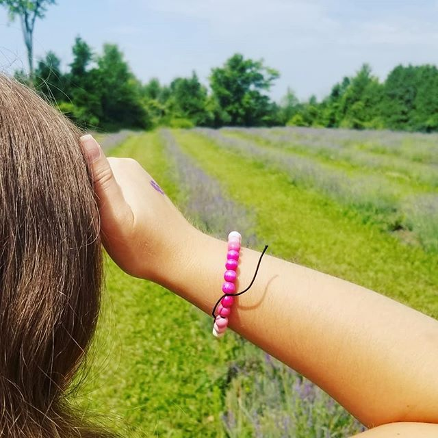 Visited the @terrebleu lavender 💜 farm today 💜  Lavender is great for so many things including but not limited to: . 💜 rubbing on temples to relieve headaches . 💜 applying on minor skin wounds for pain relief and antibacterial protection . 💜 antianxiety sleep aid . 💜 muscle relaxant . 💜 topical treatment for insect bites. . 💜 . all this and it smells lovely and fresh . 💜💜💜 #lavender #love