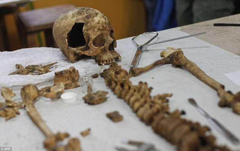 3D列印重建骨頭.jpg
