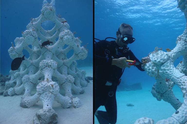 ▲ 左為 RDL 放在馬爾地夫的人工珊瑚礁,高 2.5 公尺,面積 4 平方公尺。右為潛水員用鋼絲把珊瑚固定在人工珊瑚礁上。