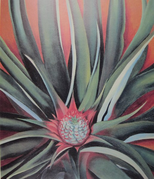 Georgia O'Keeffe,  Pineapple Bud , 1939, Honolulu Academy of Arts.