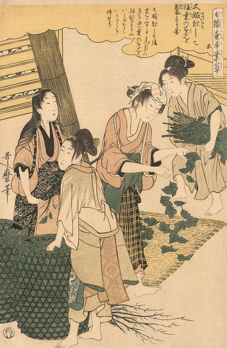 Utamaro_1_Kitagawa-Women_Engaged_in_Sericulture-Women_spreading_mulberry_leaves_on_the_silkworms-00042351-100713-F12.jpg