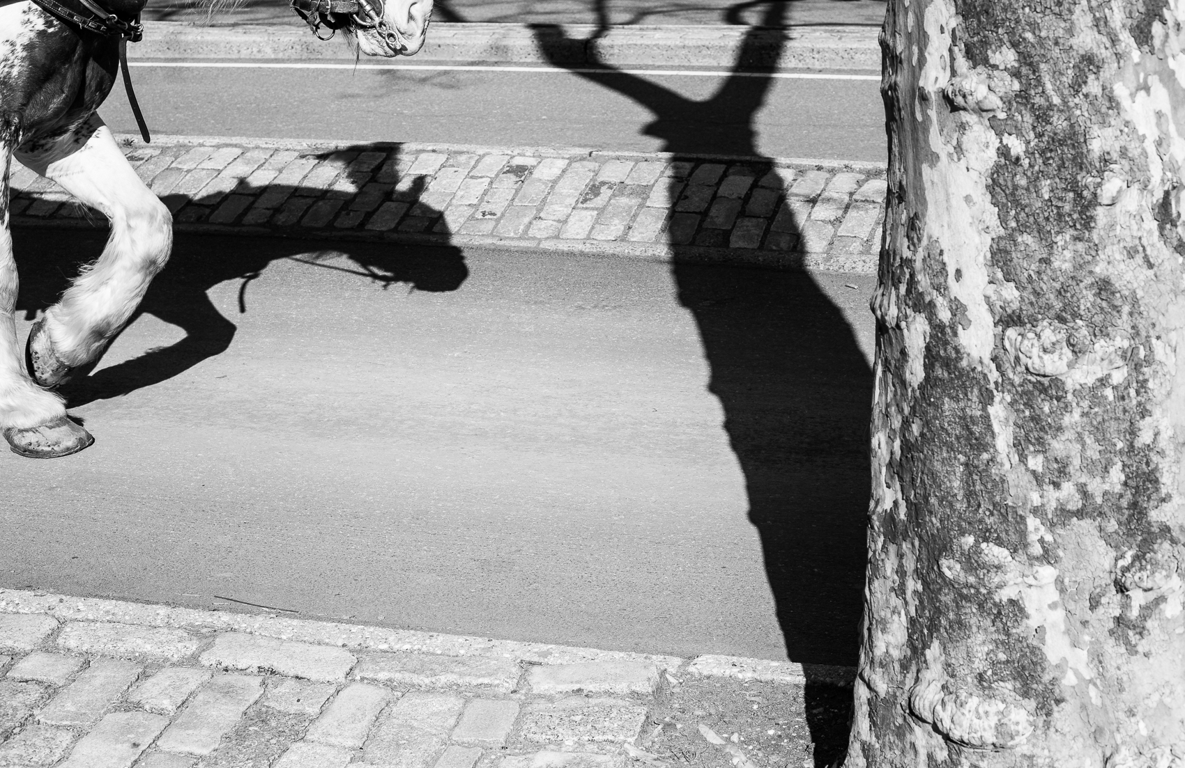 Thomas Oliver-14.jpg