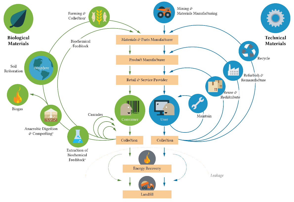 Circular economy picture.png