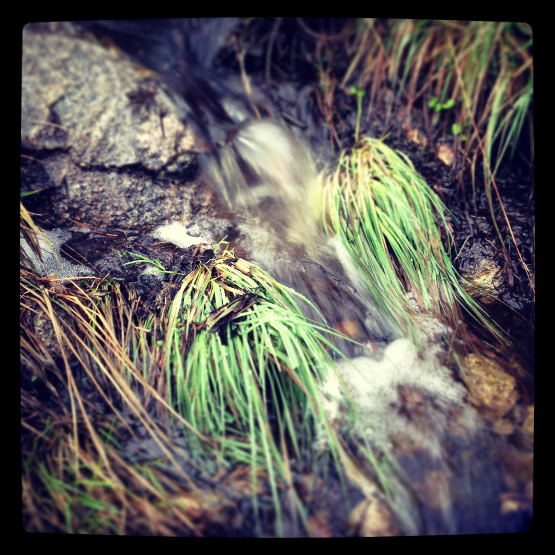 Vann i bekken