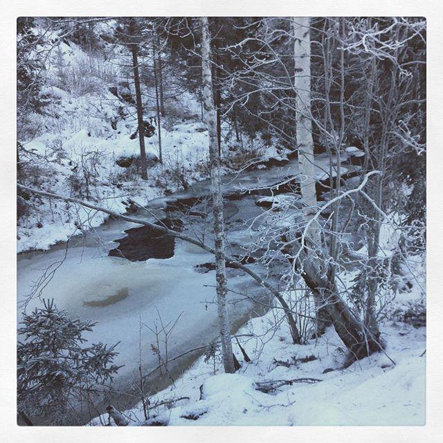 Nydelig ved bekken idag, men kaldt! #bjørnerud #vinter
