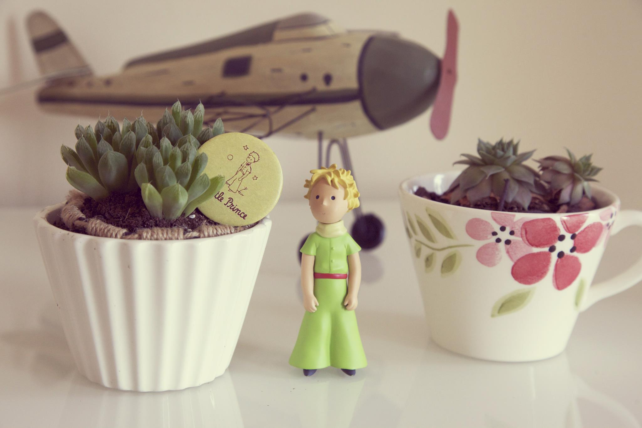 'The little prince' by Antoine de Saint-Exupéry has beena very influential book to me.