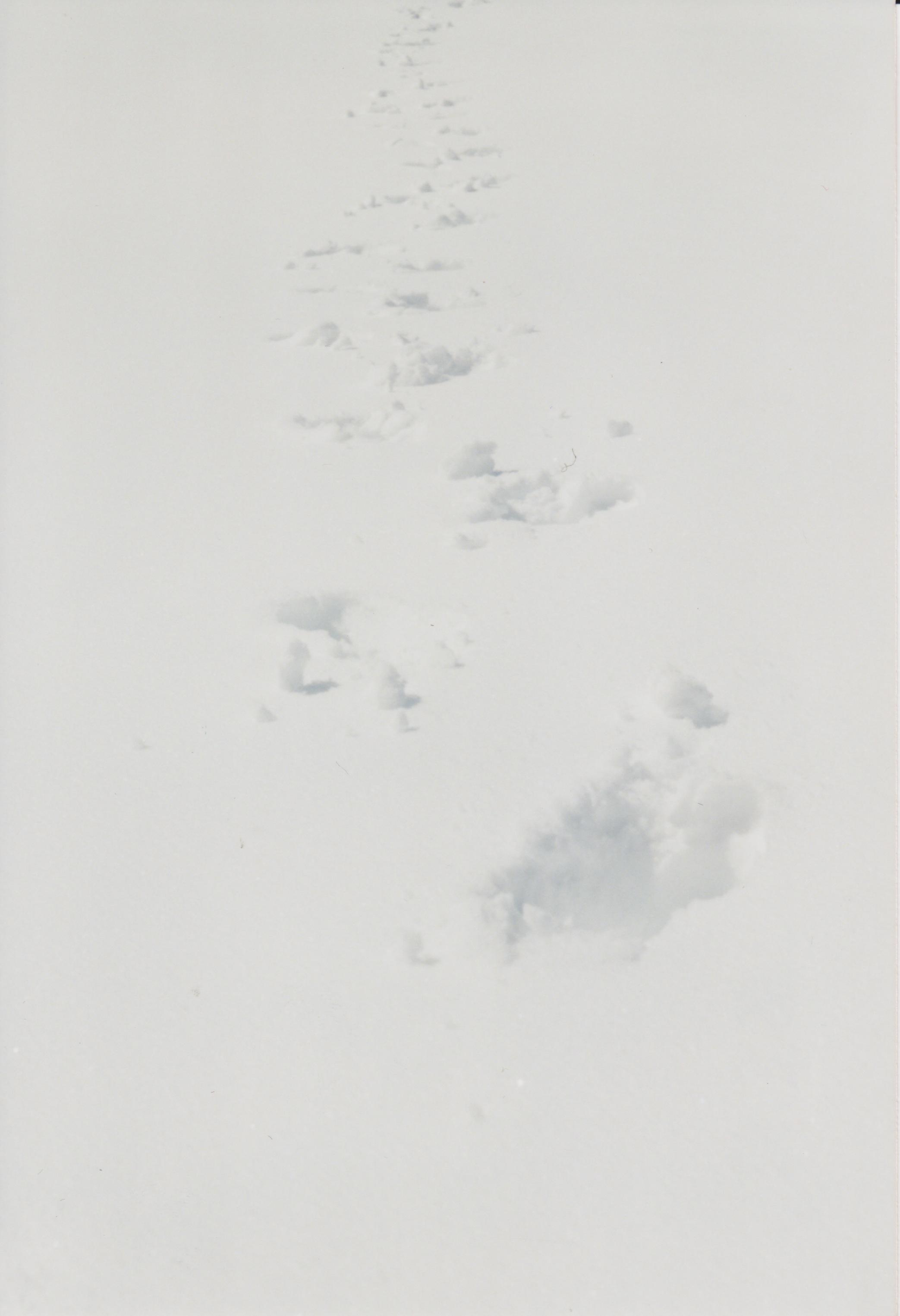 Kauderwelsch 5.jpeg