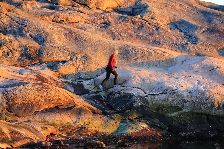 Når du først tar turen ut til Hankø, så anbefaler vi at du utforsker den skikkelig. Du vil bli positivt overrasket over den store variasjonen i natur og det rike dyrelivet.