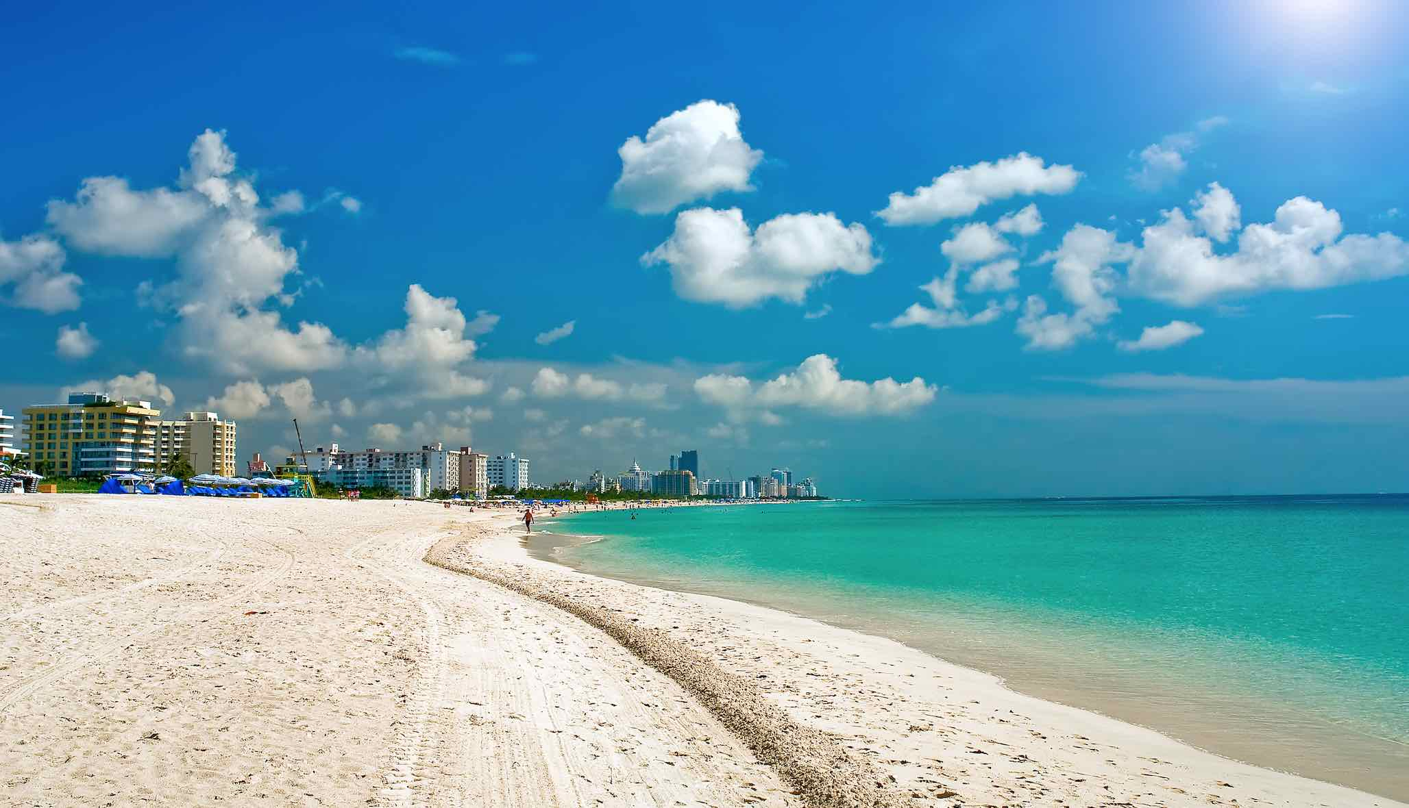 Best Miami Hotels With Beachfront Views The Most Perfect View