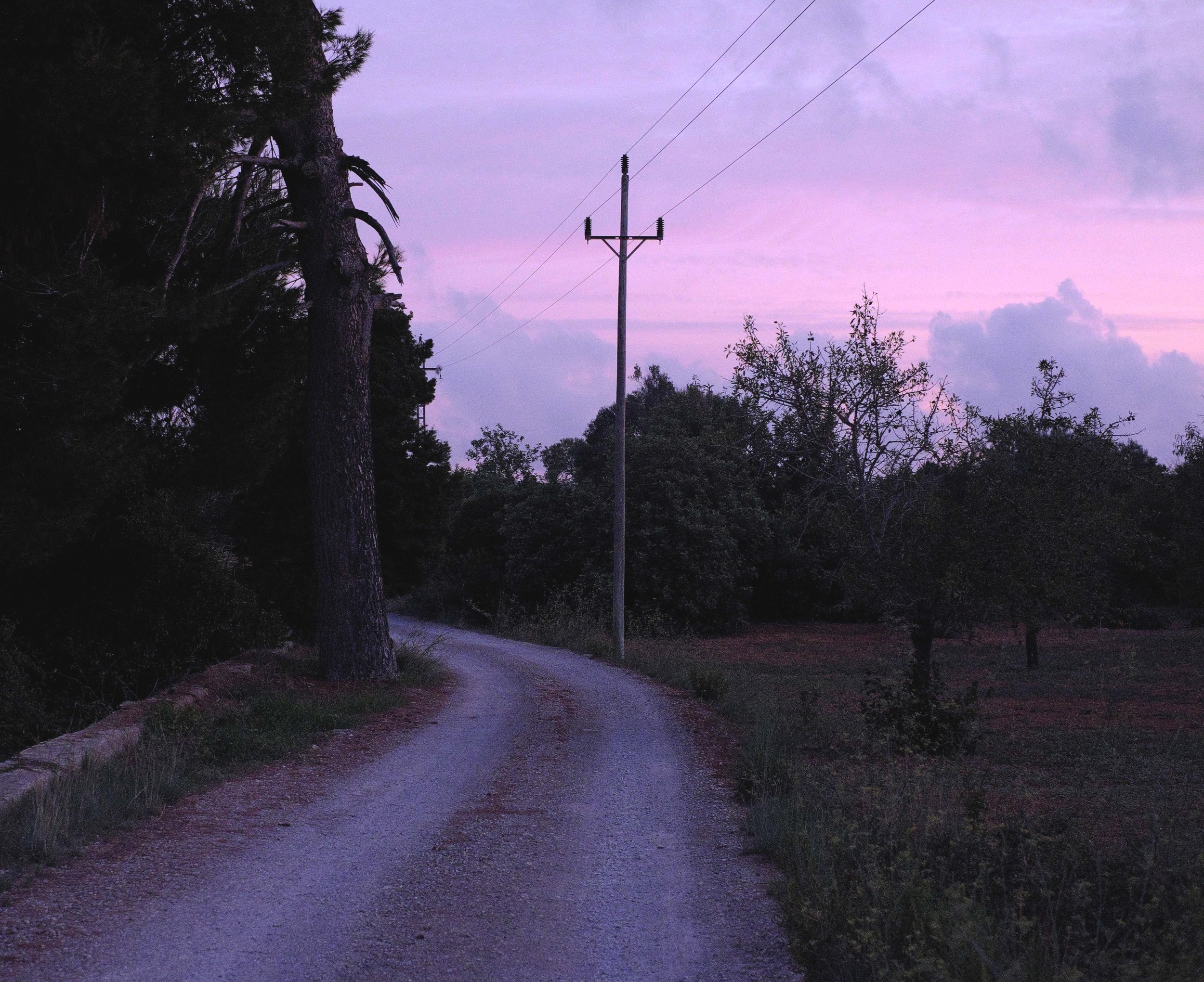 sunrise web.jpg