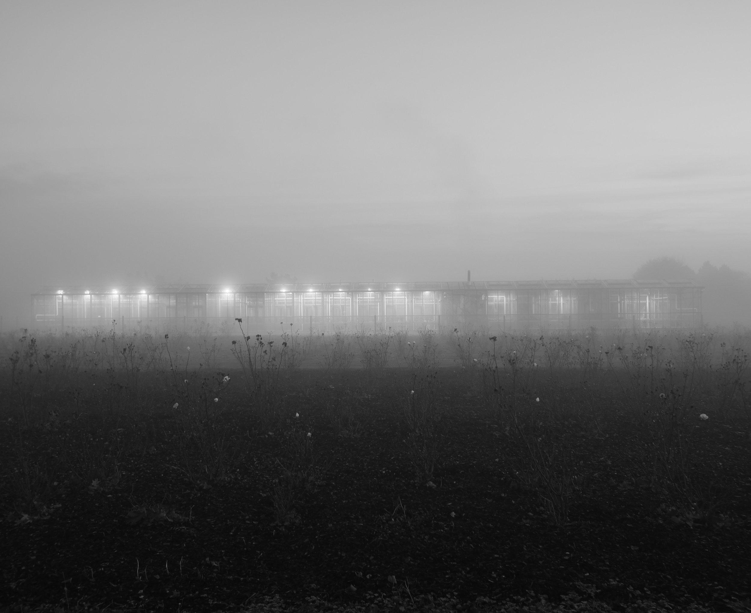 farm4web.jpg