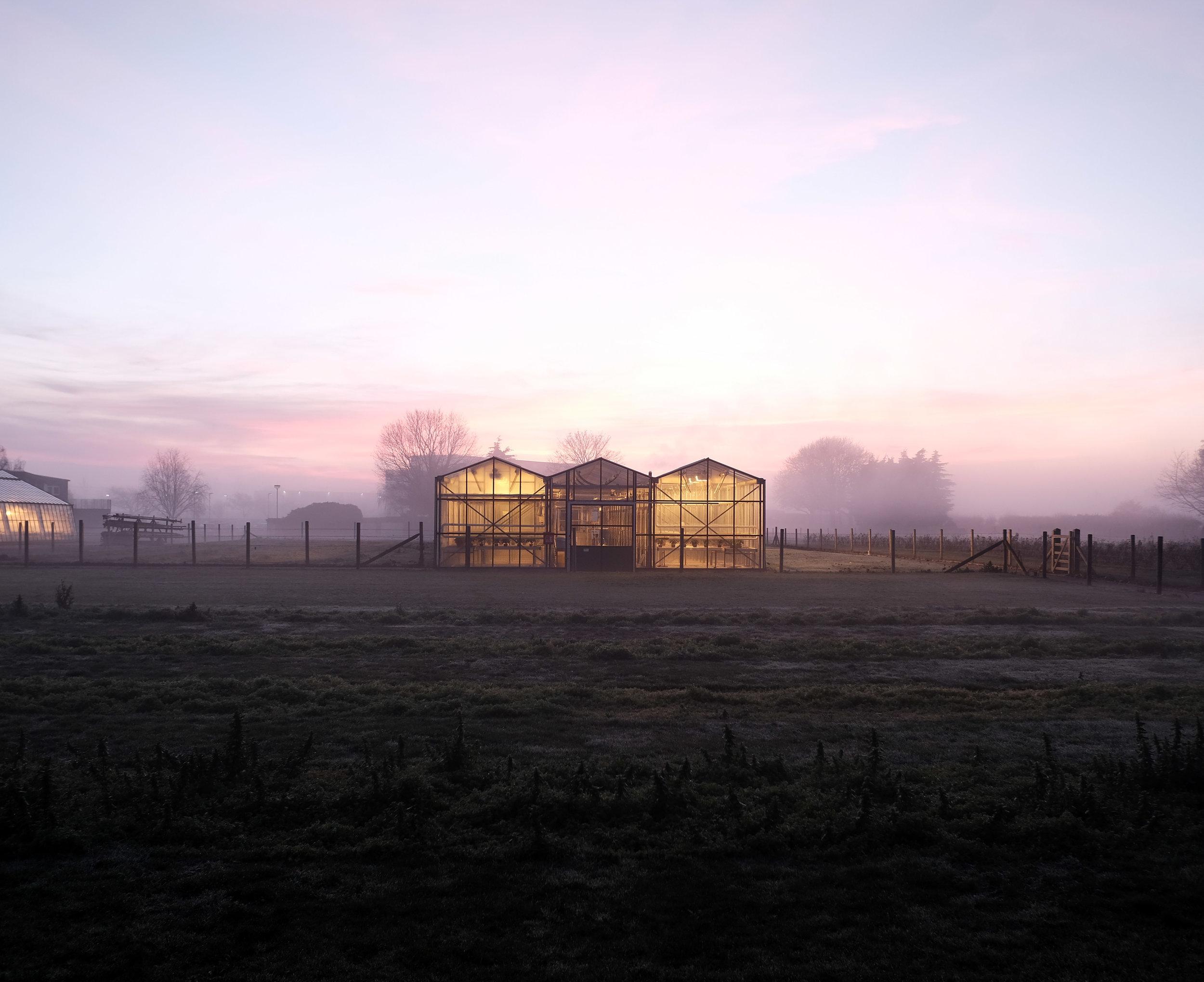 Farm5 web.jpg