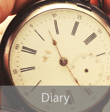 Diary button text.jpg